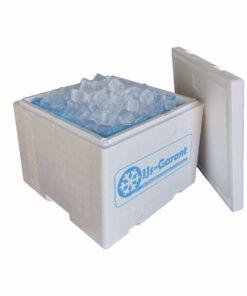 ijsblokjes bestellen verzend box bezorgen